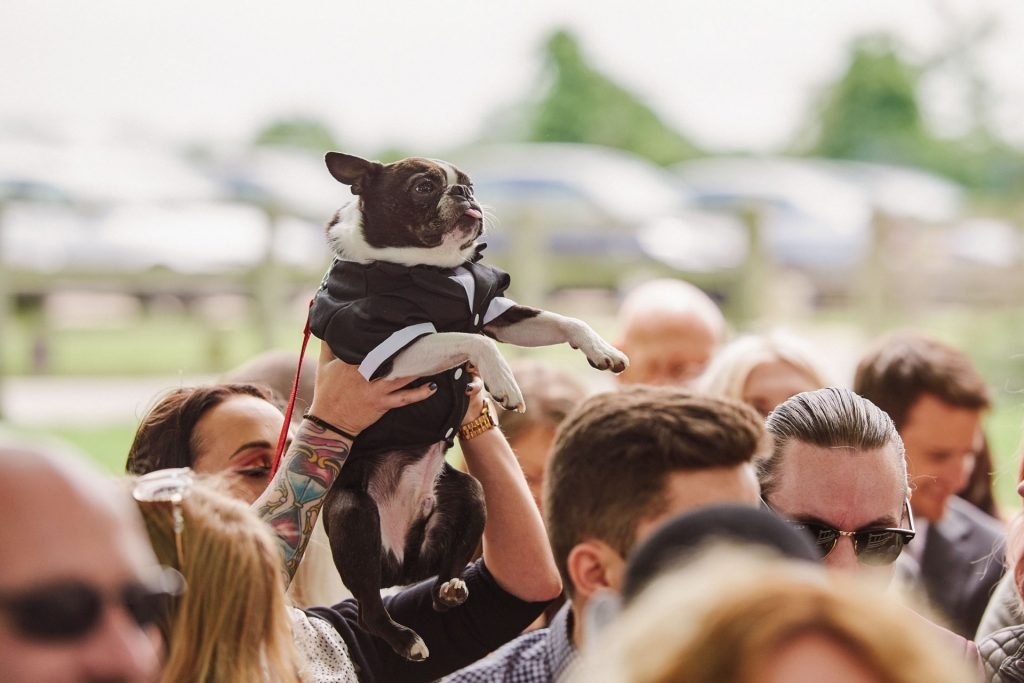 Dog wearing a suit and being held above crowd during outdoor wedding ceremony.